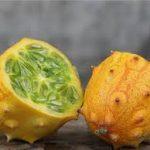 African Horned Fruit
