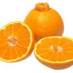Dekopon fruits