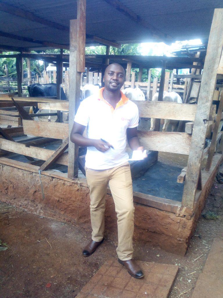 Dairy farm visit in Nyeri, Dickson Kahuro