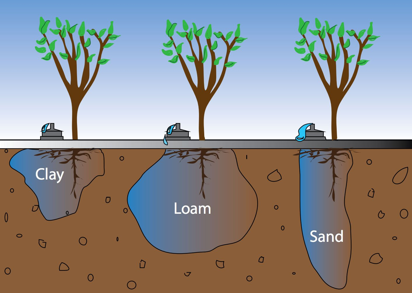 Types of soils and the best irrigation methods